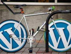 Master SEO for WordPress