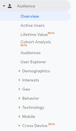 Google Analytics Tracking Audience